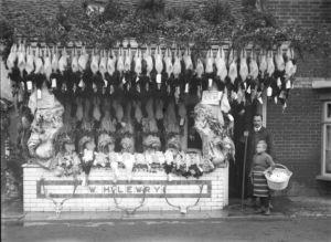 Lewry-Shop